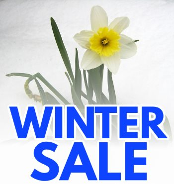 winter sale at sweetland garden mercantile