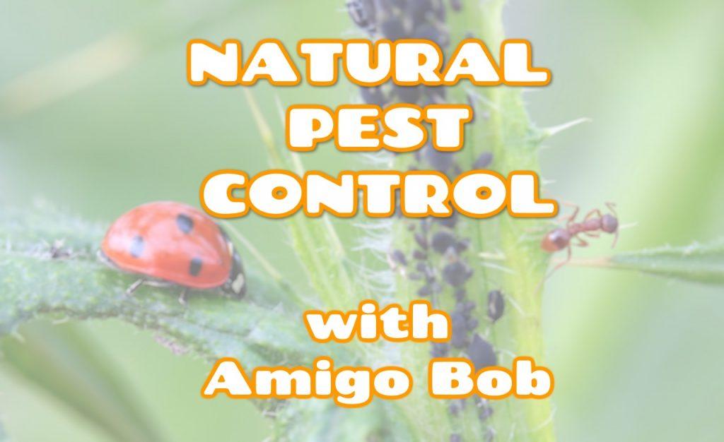 Natural Pest Control class