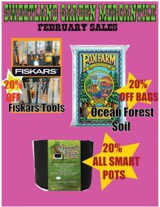 February 2020 Specials