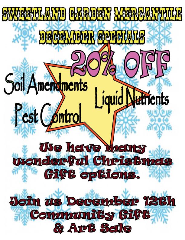 December 2020 sales flyer